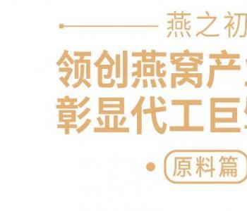 领创燕窝产业标准,彰显代工巨擘价值!燕之初将隆重亮相2021第28届北京健博会